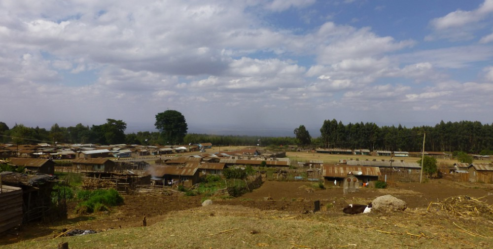 KSR 2015 landscape