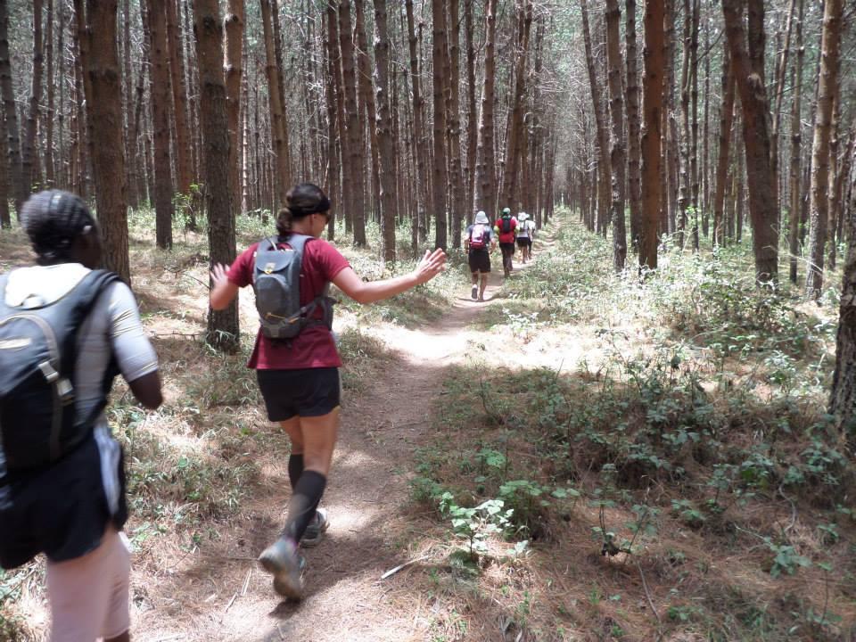 KSR runners