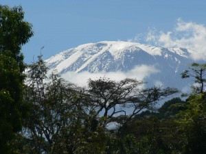 SENE Kilimanjaro Climb (1)