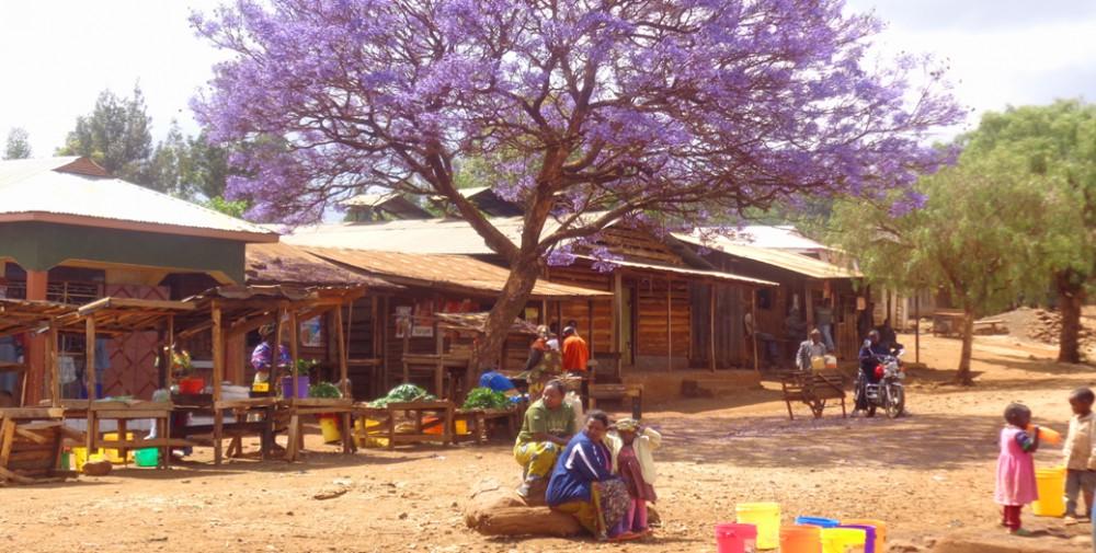 Tanzania colorful village