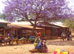 Tanzania colorful village