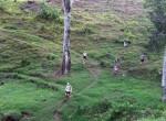KSR 2012 in the middle of the Kili's slopes